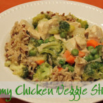Creamy Chicken Vegetable Stir Fry