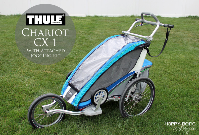 Thule Chariot Cx 1 An Amazing Multifunctional Child