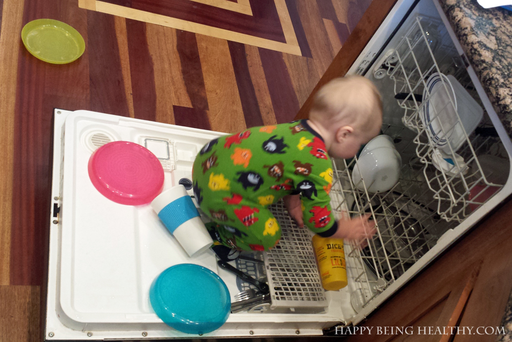 Little cutie getting into the dishwasher